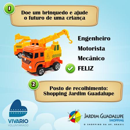alt1_posts_Projeto_Viva_Rio