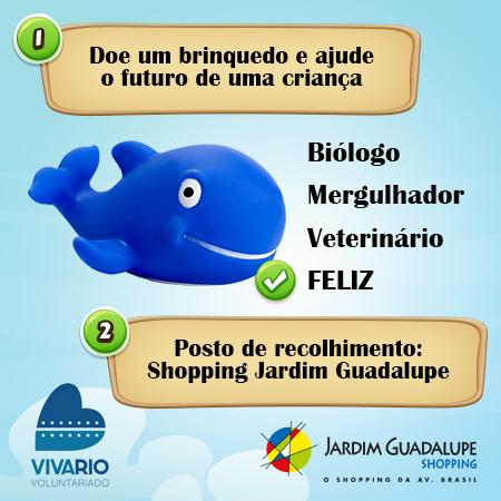 alt1_posts_Projeto_Viva_Rio3